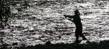 Fly fishing for trout, Motueka River