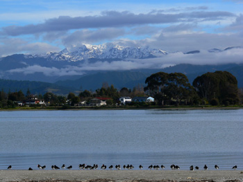 Motueka, Tasman, New Zealand
