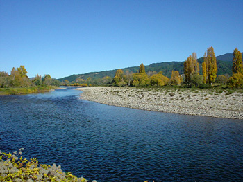 Motueka River, great trout fly fishing river