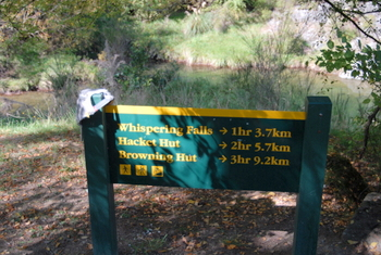 You can walk the Pelorus Track from Aniseed Valley in Richmond or do some short day walks