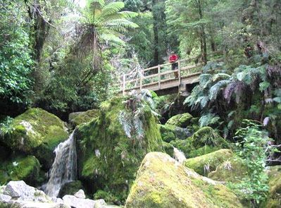 Enjoy tramping the Heaphy Track