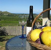 Enjoy a wine and fresh grapefruit on the balcony
